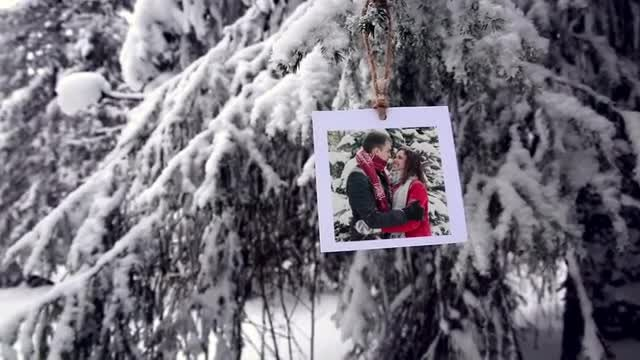Photos In The Winter Forest: After Effects Templates
