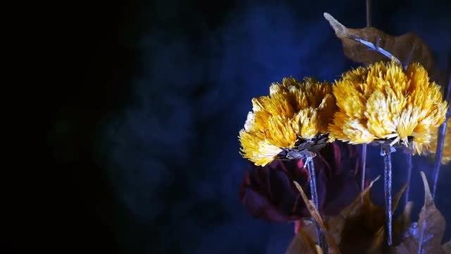 Yellow Flowers In Smoke: Stock Video
