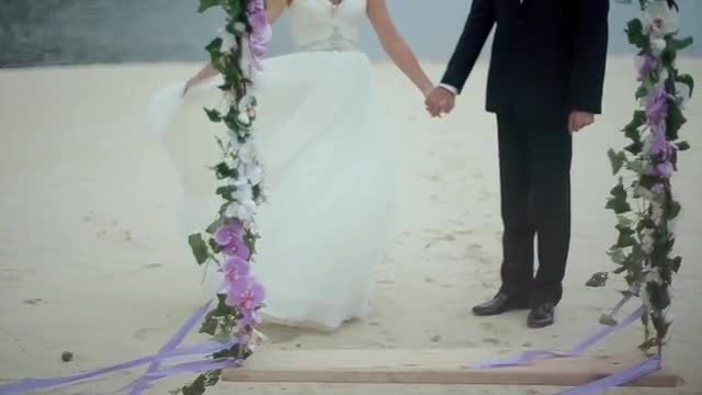Bride And Groom Hold Hands: Stock Video