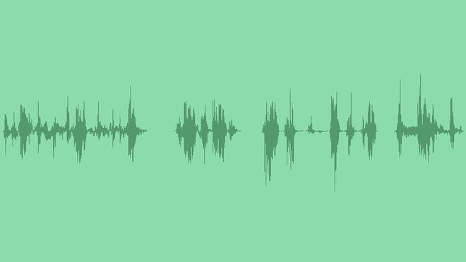 Zombie Chew: Sound Effects