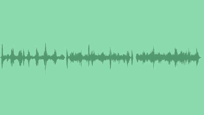 Sea And Birds: Sound Effects