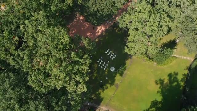 Aerial Of Wedding In Park: Stock Video