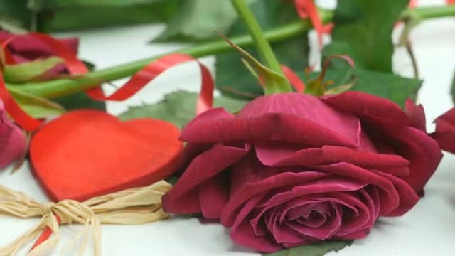 Beautiful Roses: Stock Video