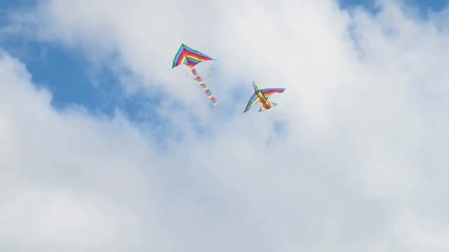 Colorful Kites Flying: Stock Video
