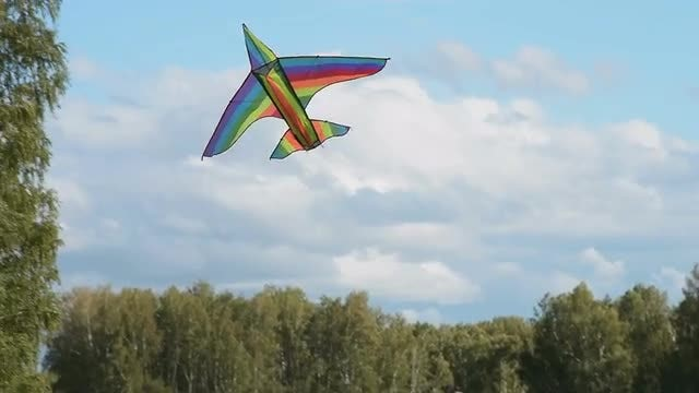 Woman Flying A Kite: Stock Video