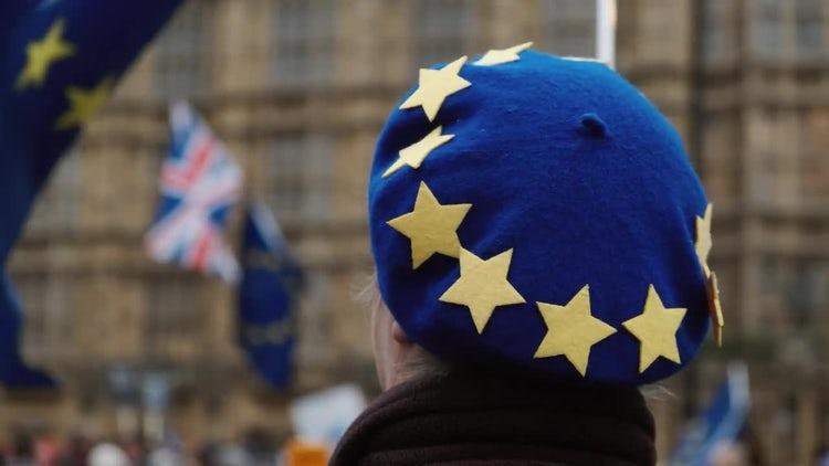 Pro-EU Supporter: Stock Video