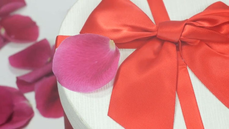Gift Box And Rose Petals: Stock Video