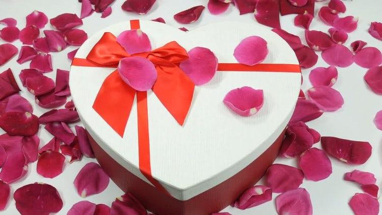 Chocolates And Rose Petals: Stock Video