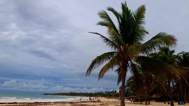 Beautiful Beach: Stock Video