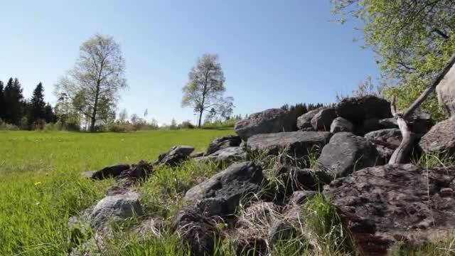 Beautiful Nature Scenery: Stock Video