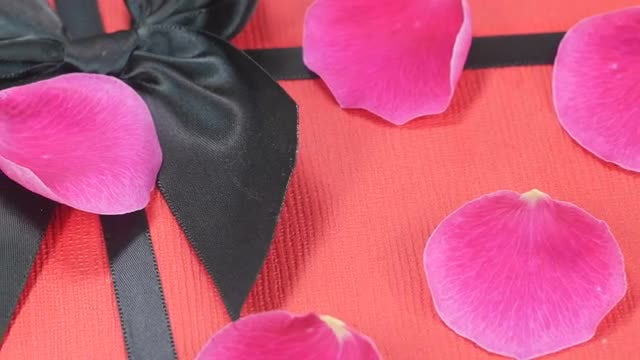 Pink Petals And Gift: Stock Video