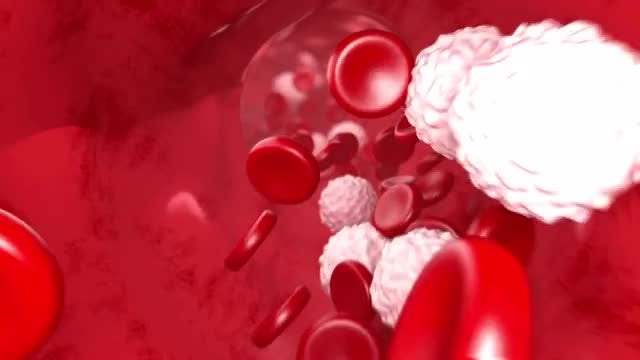 Blood Flow: Stock Motion Graphics