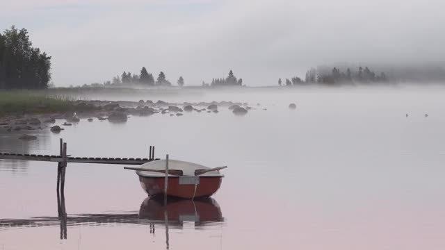 Mist On Lake: Stock Video