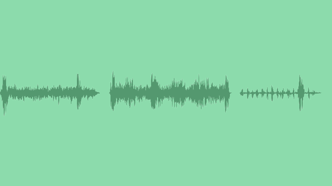 Night In Forest: Sound Effects