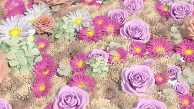 Background Of Many Flowers: Stock Motion Graphics
