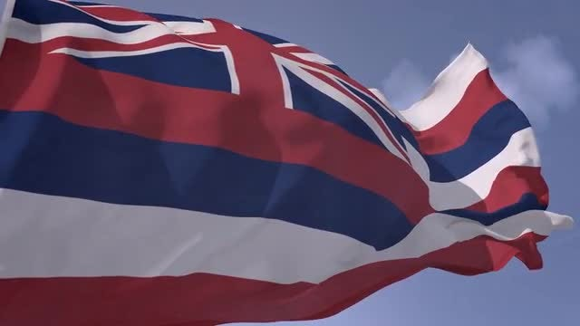Hawaii Flag: Stock Motion Graphics