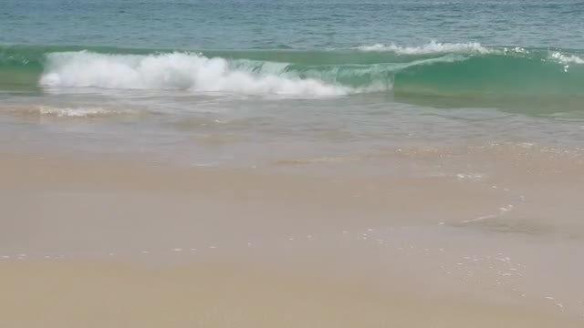 Beach Waves: Stock Video