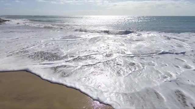 Shoreline Waves: Stock Video