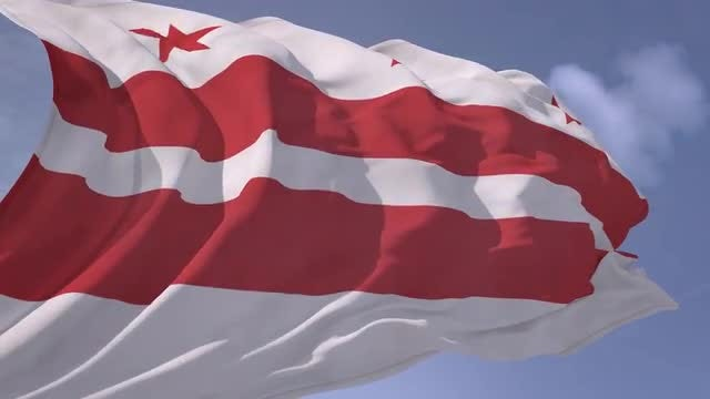 Washington D.C. Flag: Stock Motion Graphics