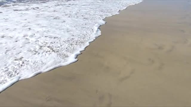Beach And Waves: Stock Video
