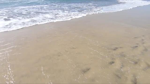 Ocean Waves On Sandy Beach: Stock Video