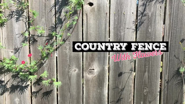 Country Fence #1: Stock Video