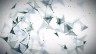 Digital Plexus Background: Motion Graphics