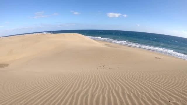 Desert And Ocean: Stock Video