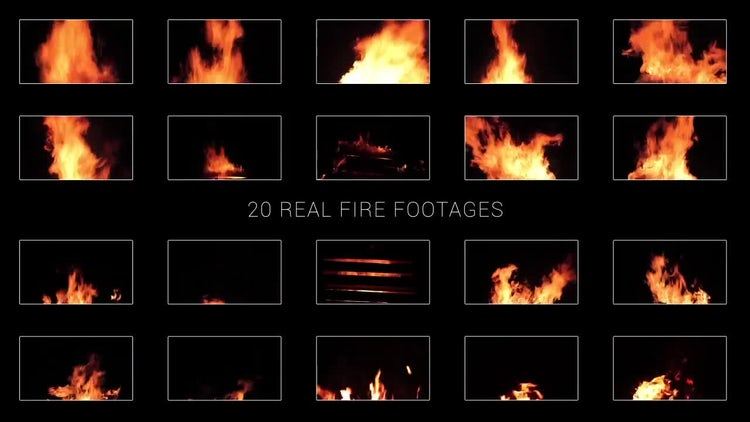 20 Pack Real Fire: Stock Video