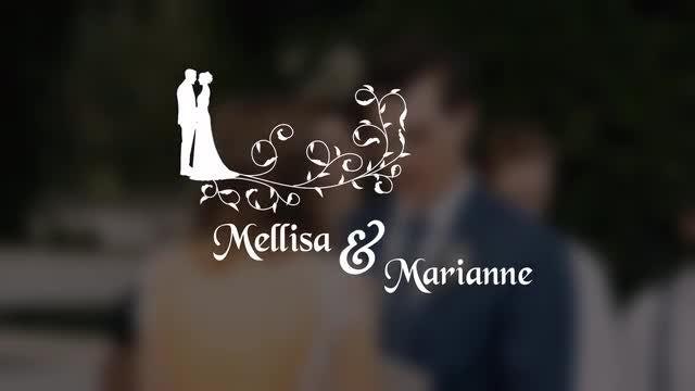 WeddingTitle: Premiere Pro Templates