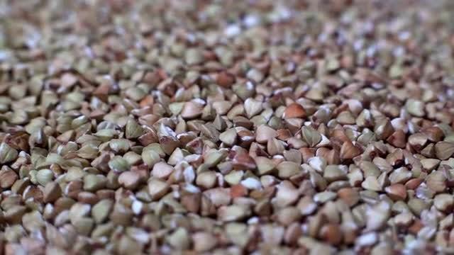 Rotating Buckwheat: Stock Video
