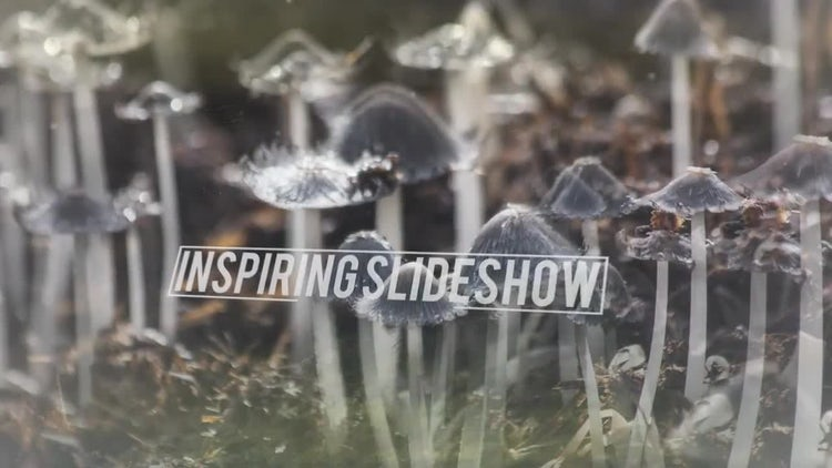Inspiring Slideshow: After Effects Templates