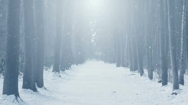 Winter Scenery: Stock Motion Graphics