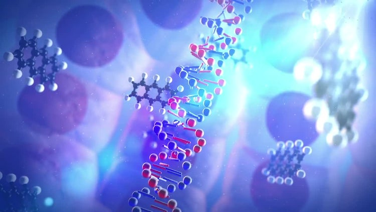 Chemical Destroys DNA Helix: Stock Motion Graphics