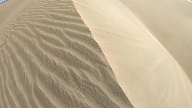 Beach Sand Dune: Stock Video