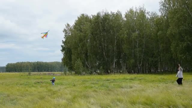 Flying A Kite: Stock Video