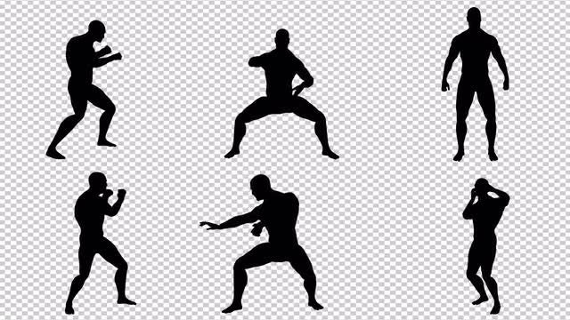 MMA Fighter In Action Pack: Stock Motion Graphics
