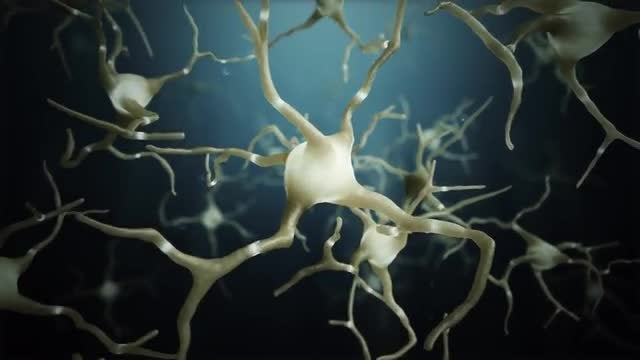 Neuron Cells Connections World: Stock Motion Graphics
