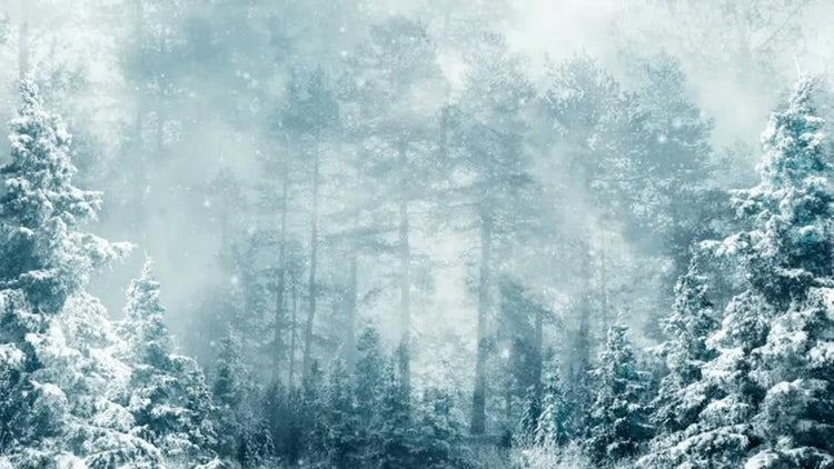 Winter Dream: Stock Motion Graphics