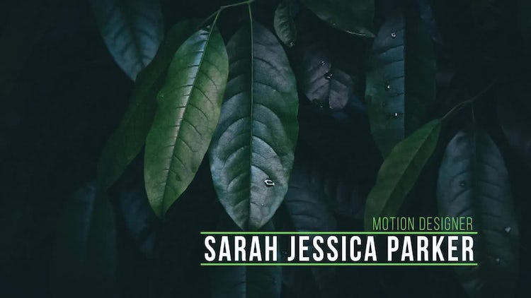 Simple Lower Thirds: After Effects Templates