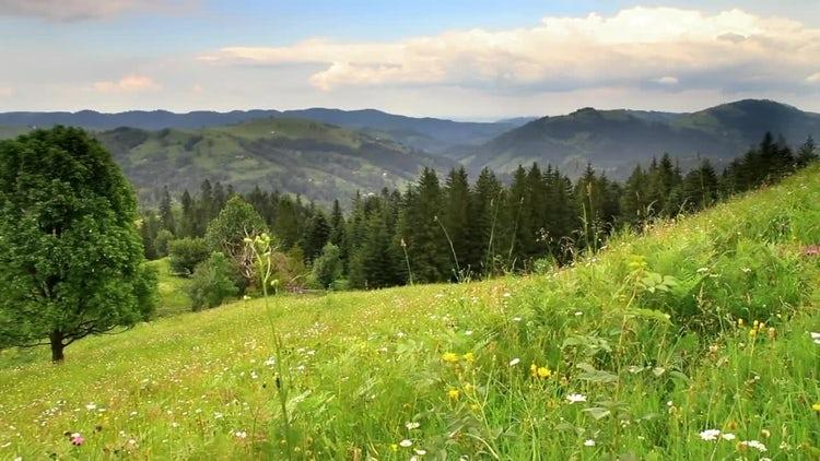 Green Mountains: Stock Video