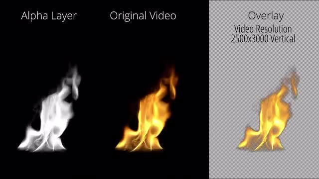 Long Tongue Of Fire: Stock Motion Graphics