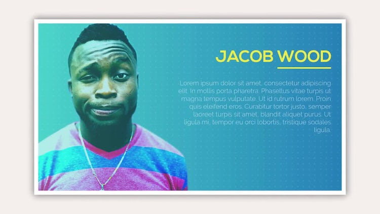 Profile Slides: After Effects Templates