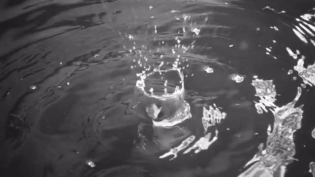 Splashes Of Water: Stock Video