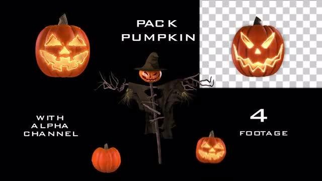 Happy Halloween Pumpkin Pack: Stock Motion Graphics