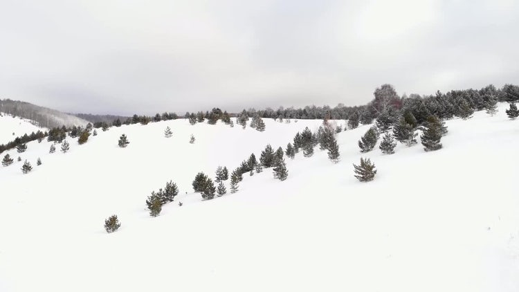 Hills Covered With Snow: Stock Video