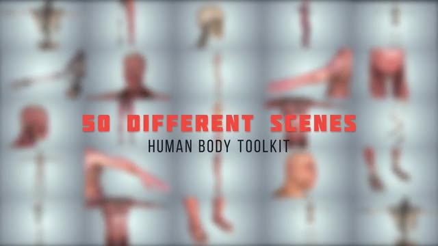 Human Body Toolkit: After Effects Templates