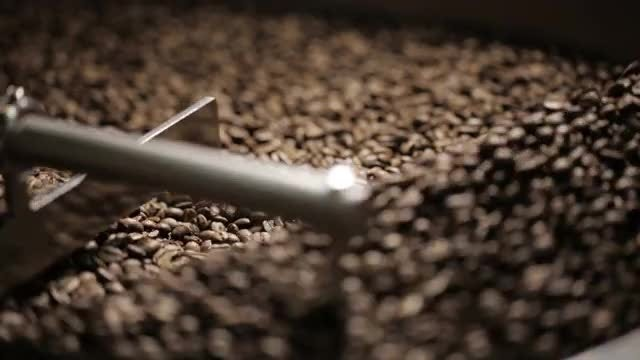 Roasted Coffee Beans: Stock Video