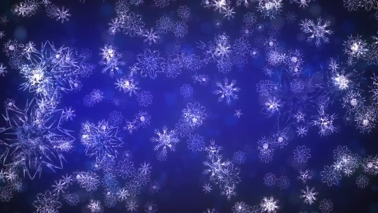 Christmas Flakes: Motion Graphics