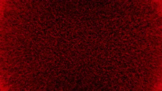 Red Wool 4K Background: Stock Motion Graphics